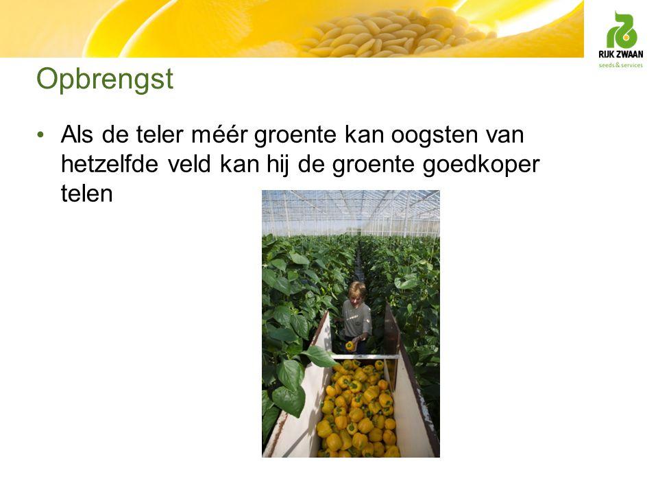 Opbrengst Als de teler méér groente kan oogsten van hetzelfde veld kan hij de groente goedkoper telen
