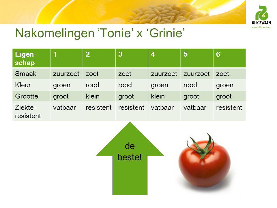 Nakomelingen 'Tonie' x 'Grinie' Eigen- schap 123456 Smaakzuurzoetzoet zuurzoet zoet Kleurgroenrood groenroodgroen Groottegrootkleingrootkleingroot Zie