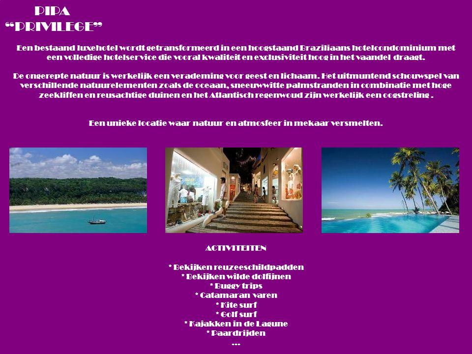 Een bestaand luxehotel wordt getransformeerd in een hoogstaand Braziliaans hotelcondominium met een volledige hotelservice die vooral kwaliteit en exclusiviteit hoog in het vaandel draagt.