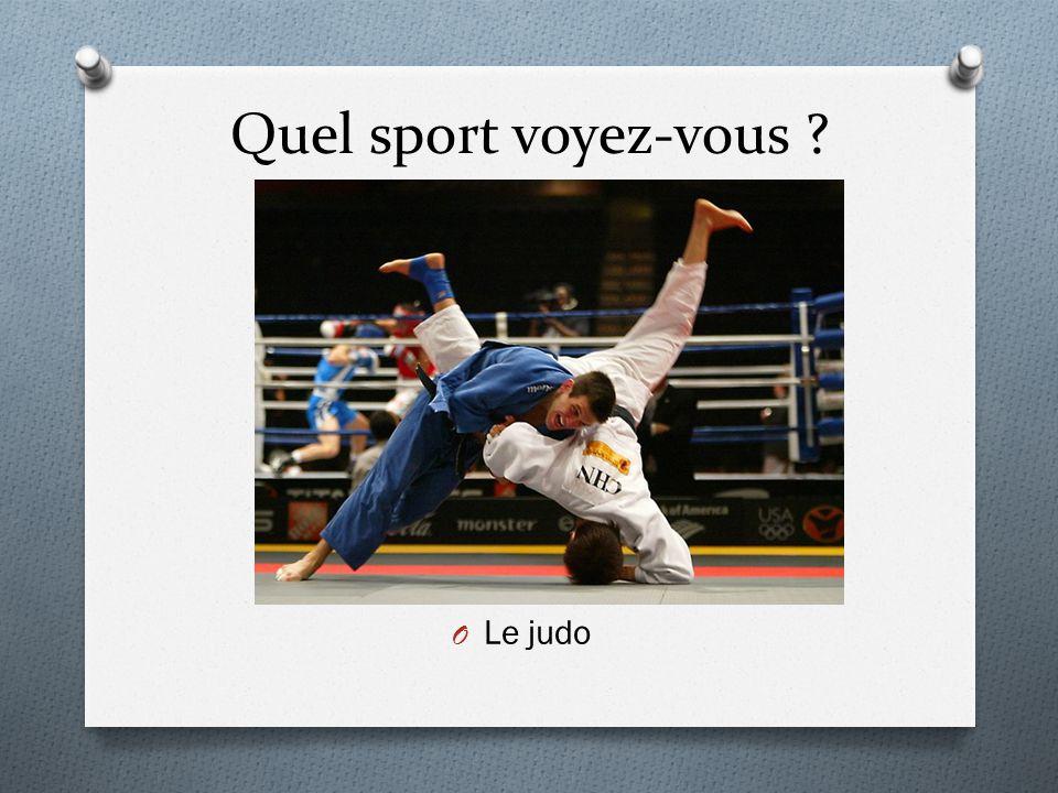Quel sport voyez-vous ? O Le judo