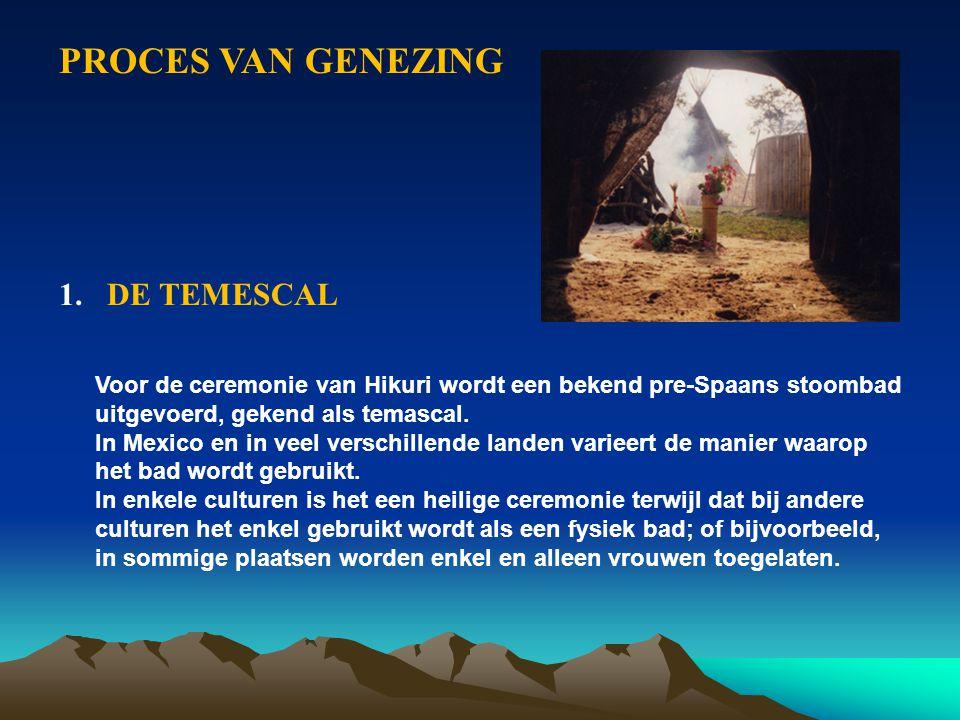PROCES VAN GENEZING 1.DE TEMESCAL Voor de ceremonie van Hikuri wordt een bekend pre-Spaans stoombad uitgevoerd, gekend als temascal. In Mexico en in v