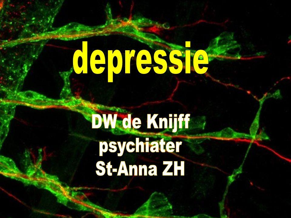 Depressie 1.Wanneer spreken we van een depressie.2.Hoe vaak komt het voor.