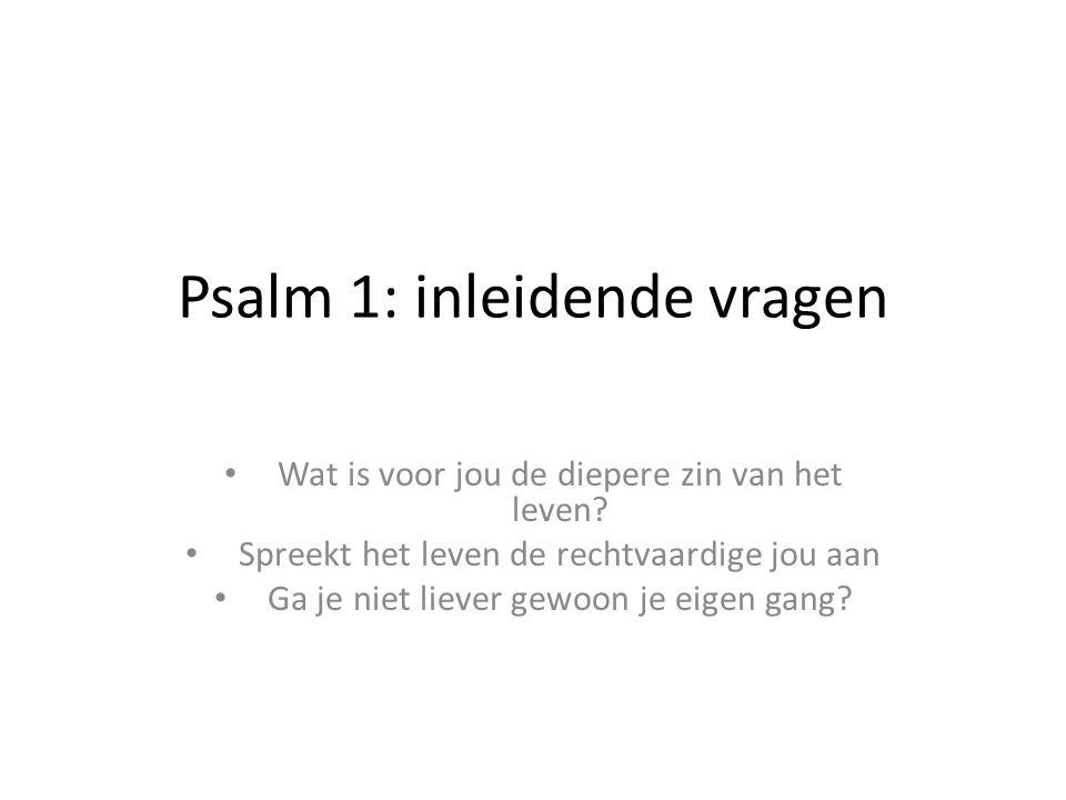 Psalm 1: inleidende vragen Wat is voor jou de diepere zin van het leven? Spreekt het leven de rechtvaardige jou aan Ga je niet liever gewoon je eigen