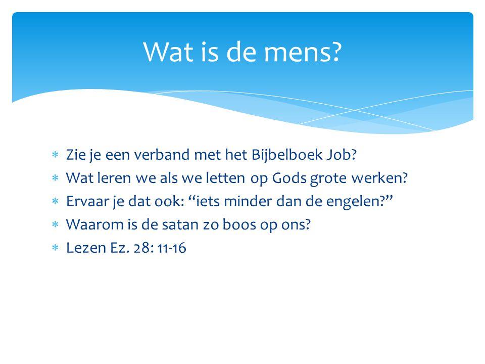 """ Zie je een verband met het Bijbelboek Job?  Wat leren we als we letten op Gods grote werken?  Ervaar je dat ook: """"iets minder dan de engelen?""""  W"""