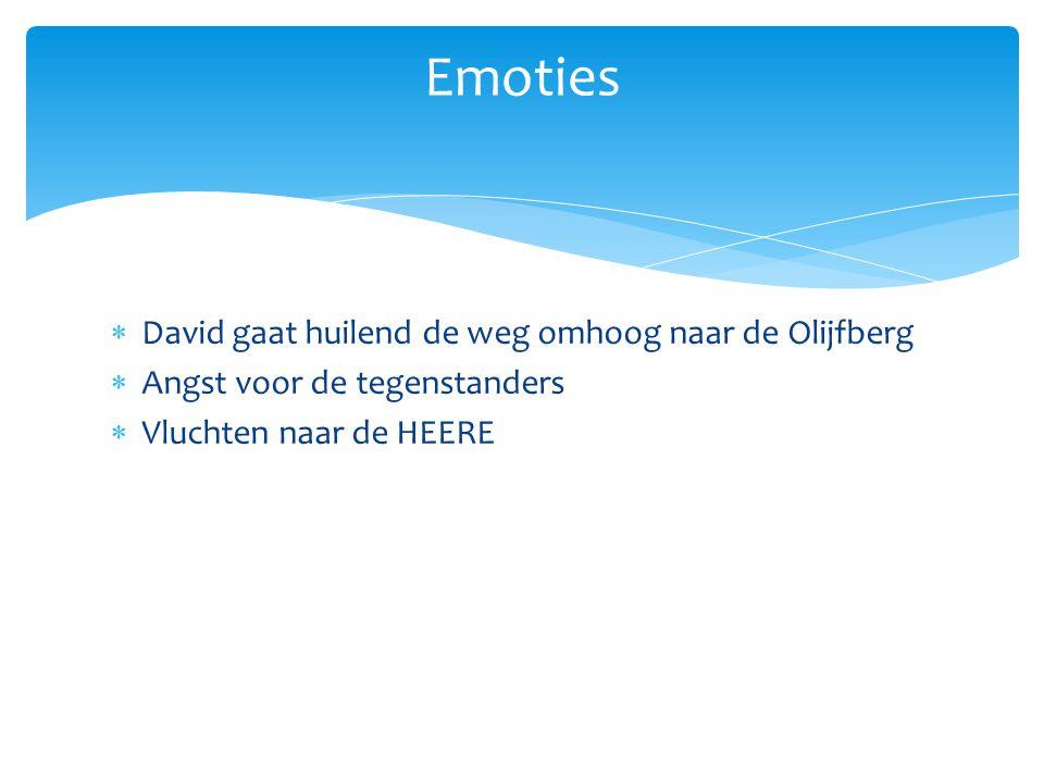  David gaat huilend de weg omhoog naar de Olijfberg  Angst voor de tegenstanders  Vluchten naar de HEERE Emoties