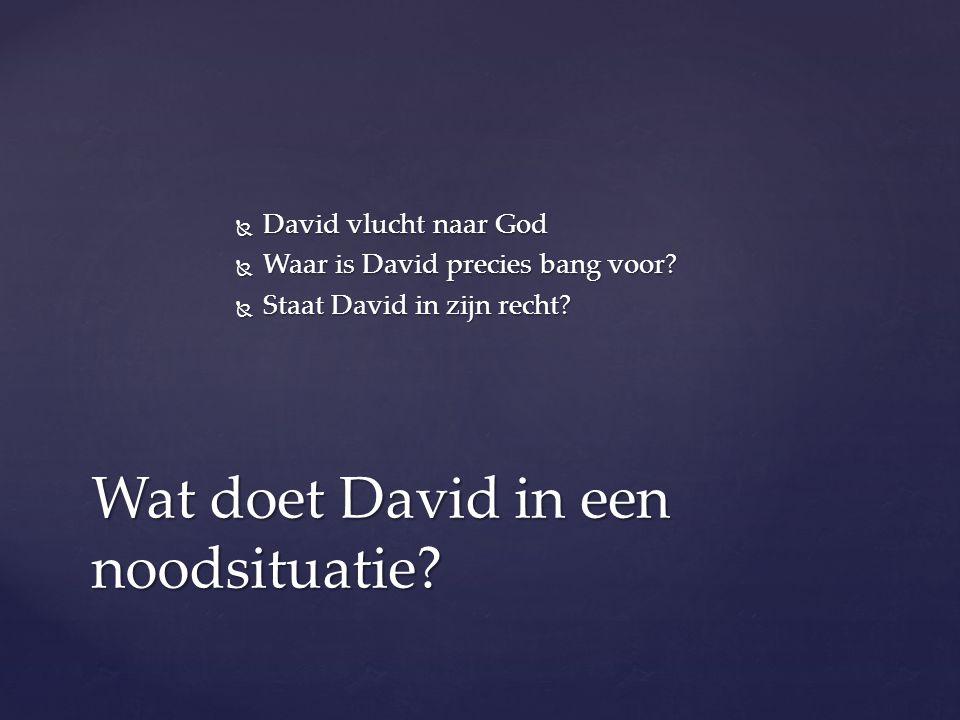  David vlucht naar God  Waar is David precies bang voor?  Staat David in zijn recht? Wat doet David in een noodsituatie?