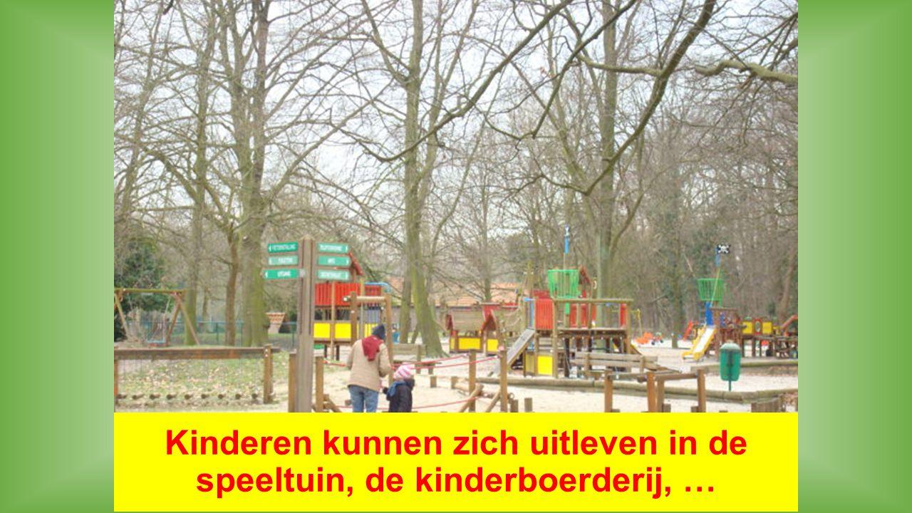 Kinderen kunnen zich uitleven in de speeltuin, de kinderboerderij, …