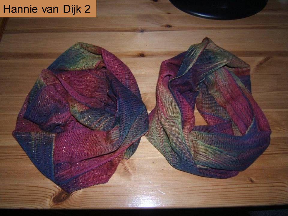 Hannie van Dijk 2