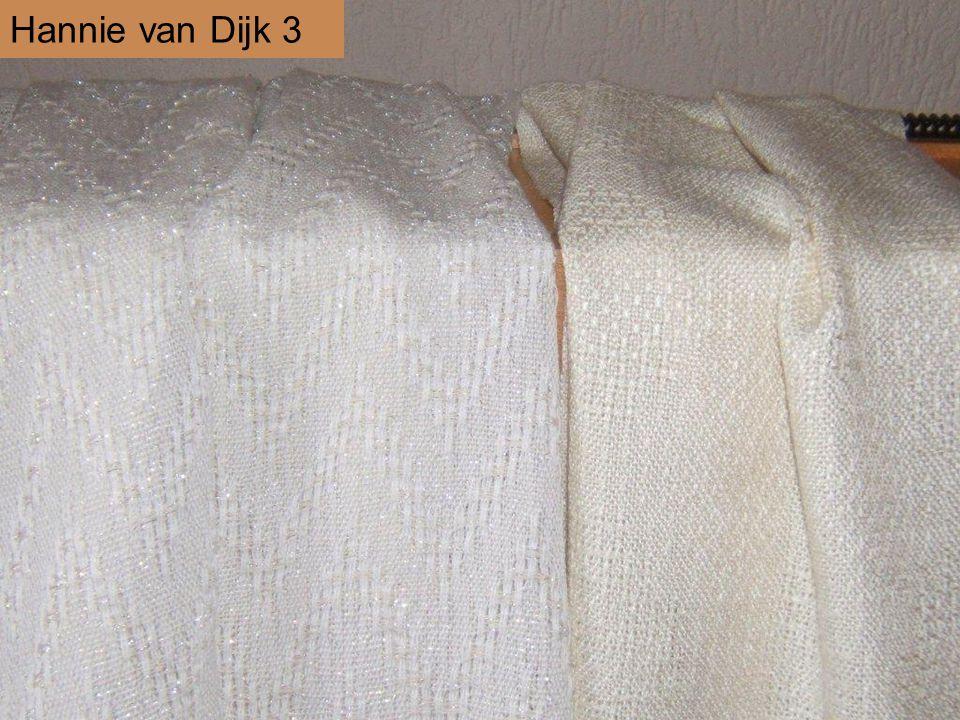 Hannie van Dijk 3