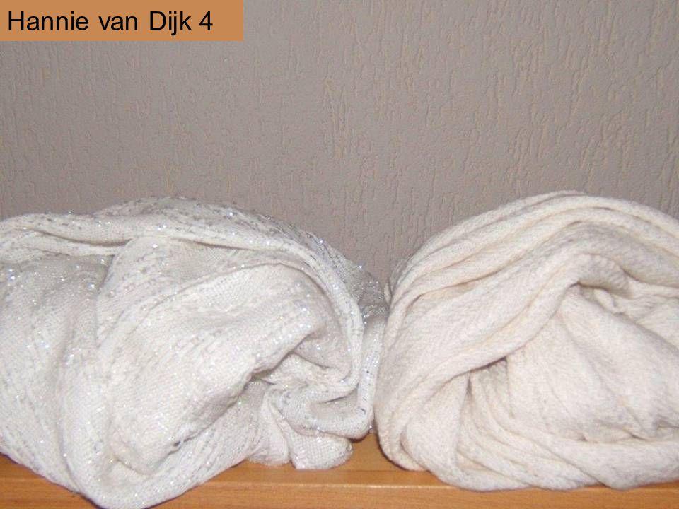Hannie van Dijk 4
