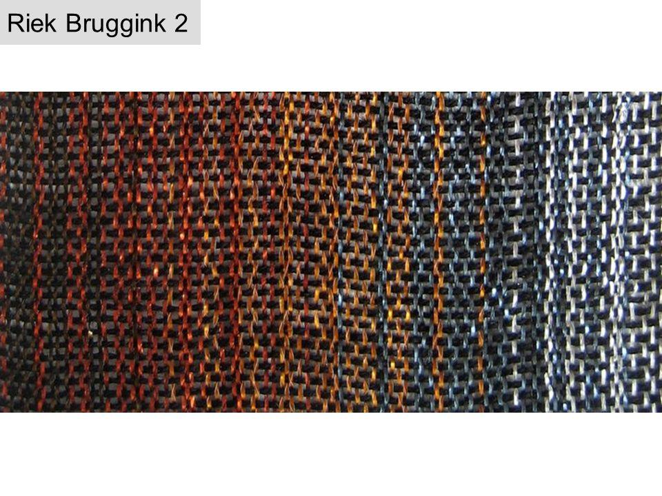 Riek Bruggink 2