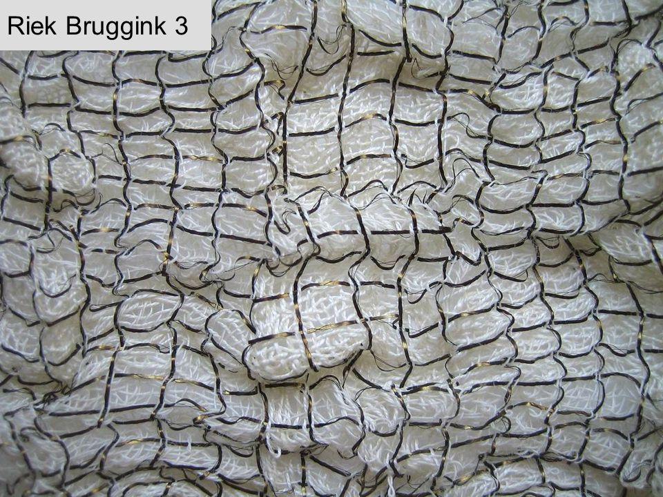 Riek Bruggink 3