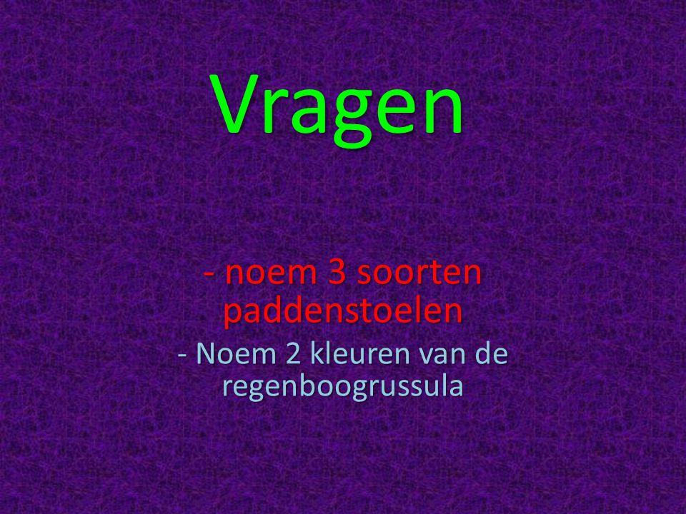Vragen - noem 3 soorten paddenstoelen - Noem 2 kleuren van de regenboogrussula