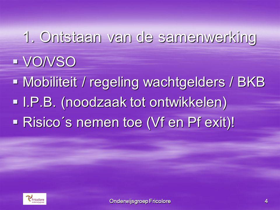 Onderwijsgroep Fricolore4 1. Ontstaan van de samenwerking  VO/VSO  Mobiliteit / regeling wachtgelders / BKB  I.P.B. (noodzaak tot ontwikkelen)  Ri