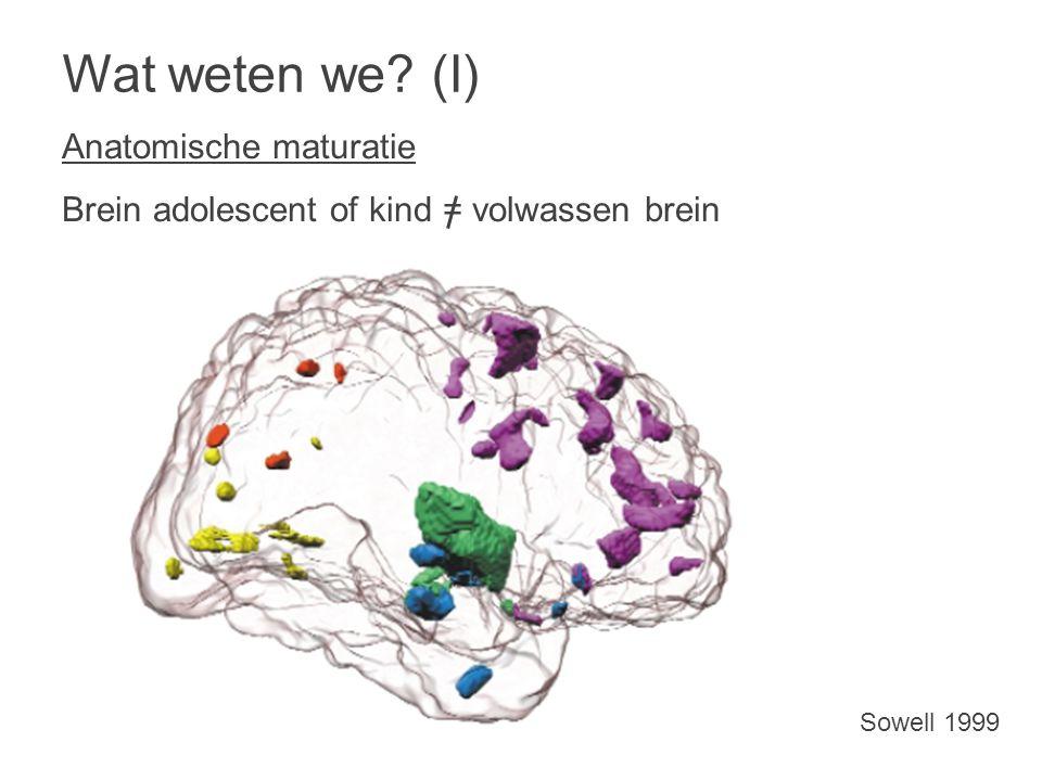 Wat weten we? (I) Anatomische maturatie Brein adolescent of kind = volwassen brein Sowell 1999