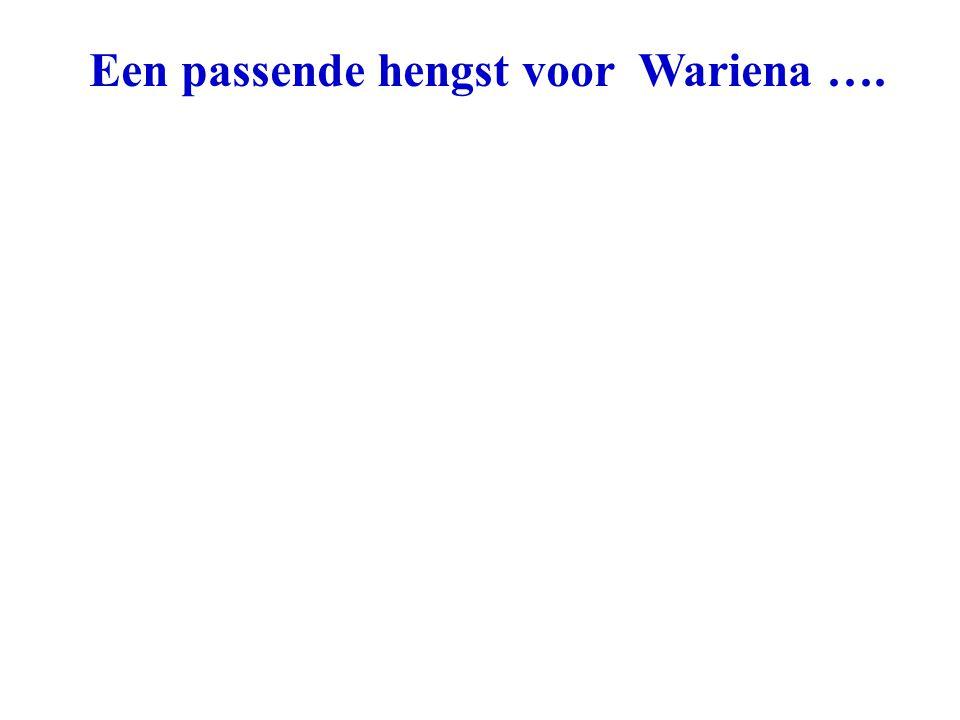 Een passende hengst voor Wariena ….