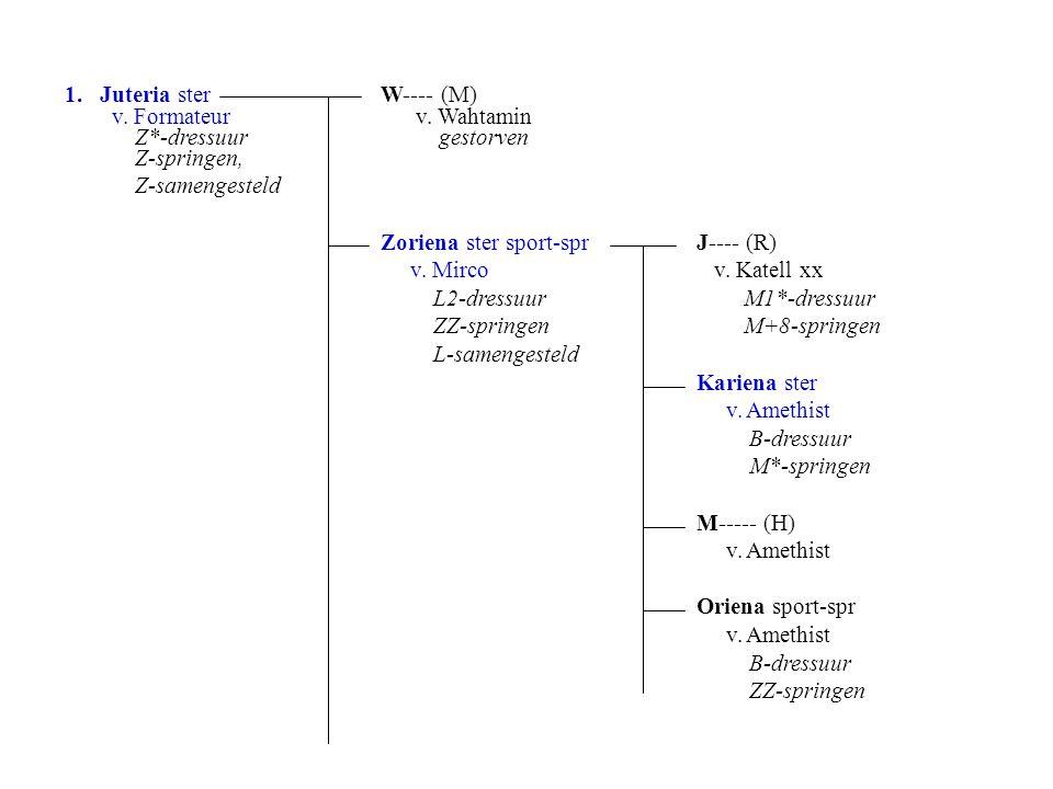 1. Juteria sterW---- (M) v. Formateur v.