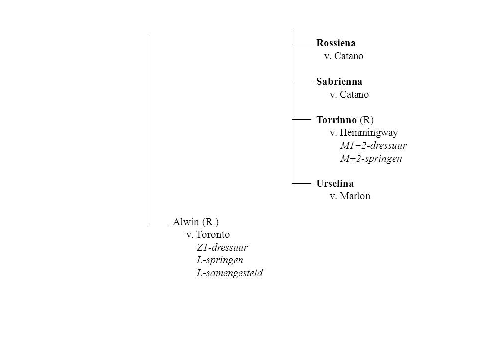 Rossiena v. Catano Sabrienna v. Catano Torrinno (R) v.