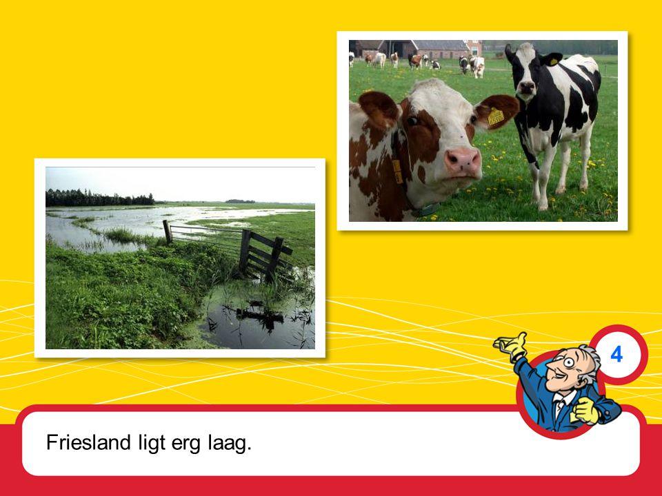 Friesland ligt erg laag. 4