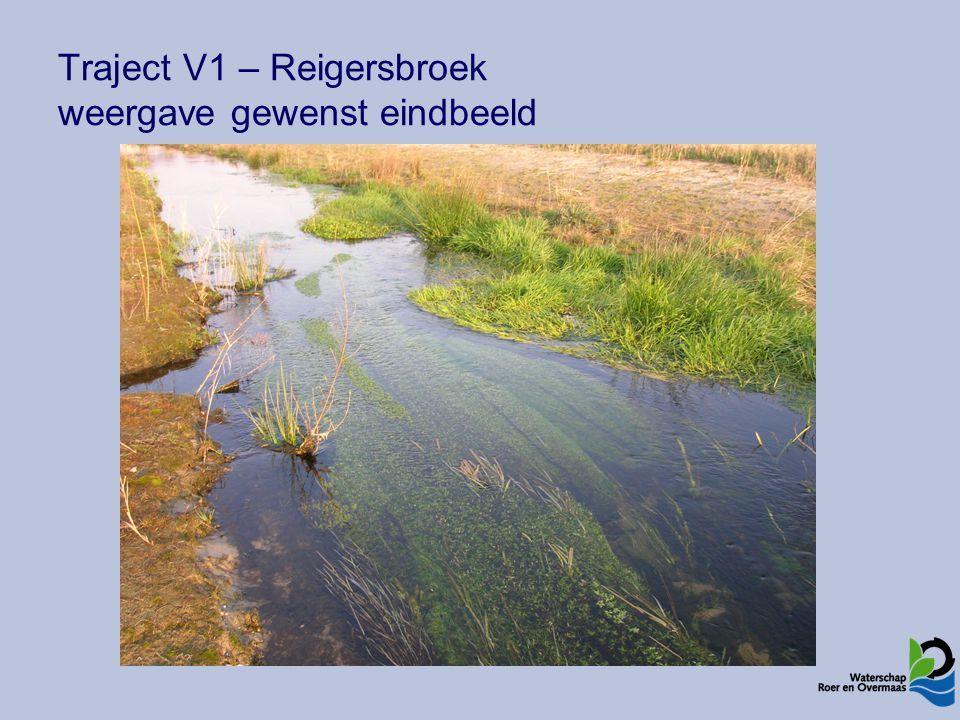 Traject V1 – Reigersbroek weergave gewenst eindbeeld