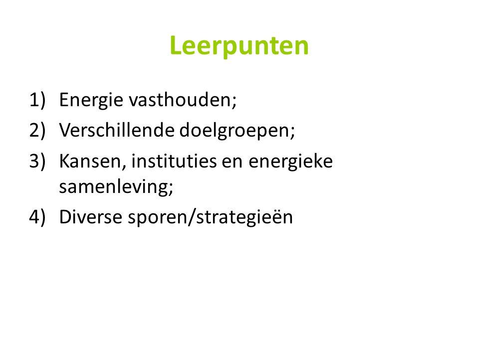 Leerpunten 1)Energie vasthouden; 2)Verschillende doelgroepen; 3)Kansen, instituties en energieke samenleving; 4)Diverse sporen/strategieën