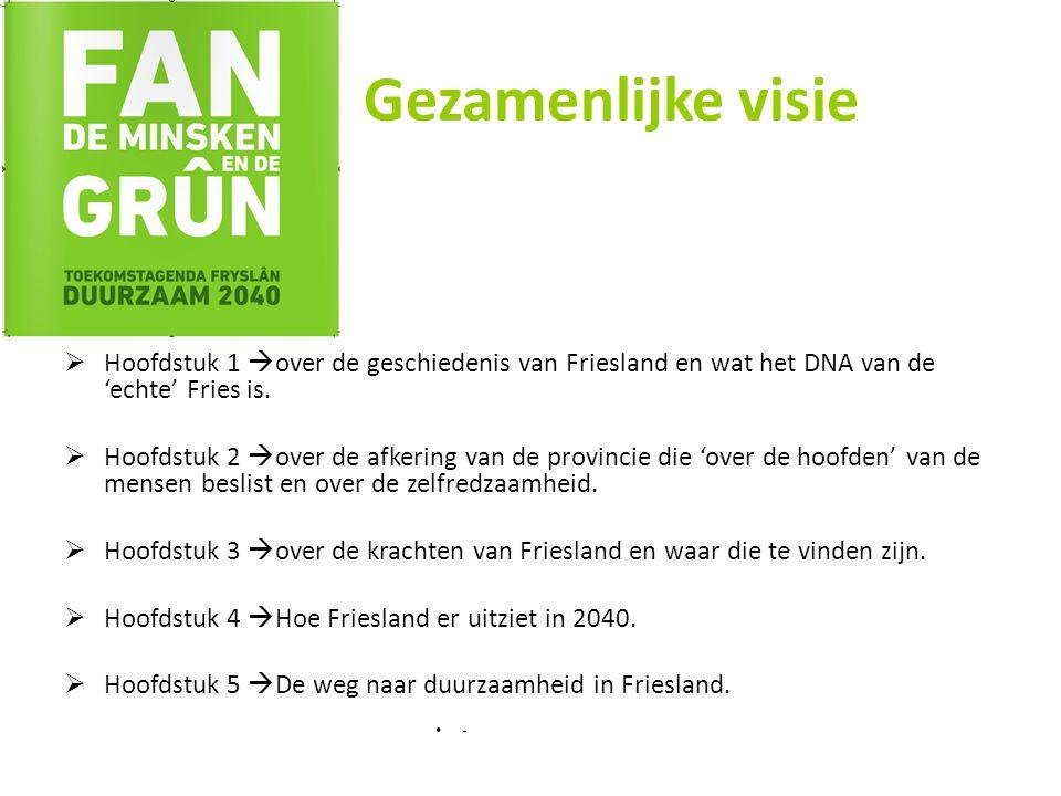 Gezamenlijke visie  Hoofdstuk 1  over de geschiedenis van Friesland en wat het DNA van de 'echte' Fries is.
