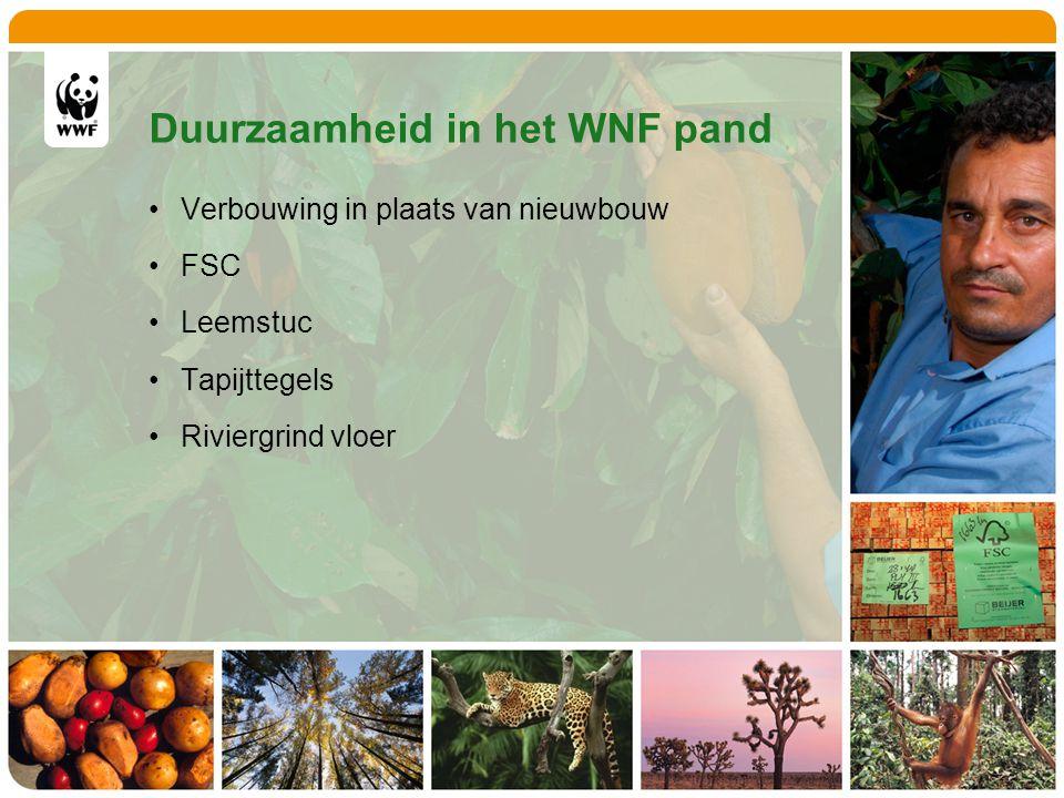 Duurzaamheid in het WNF pand Verbouwing in plaats van nieuwbouw FSC Leemstuc Tapijttegels Riviergrind vloer