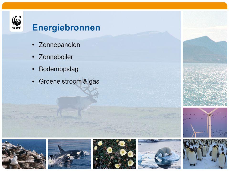 Energiebronnen Zonnepanelen Zonneboiler Bodemopslag Groene stroom & gas