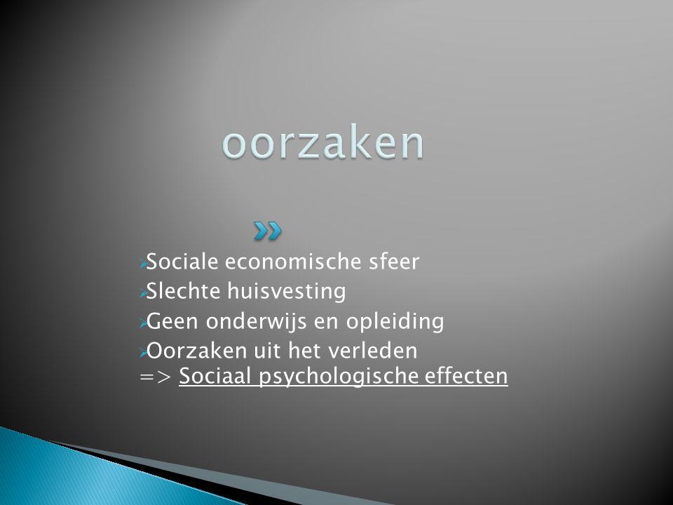 Sociale economische sfeer  Slechte huisvesting  Geen onderwijs en opleiding  Oorzaken uit het verleden => Sociaal psychologische effecten