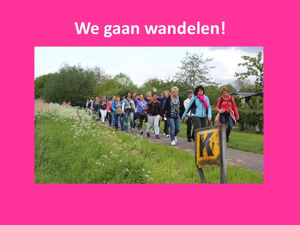 We gaan wandelen!