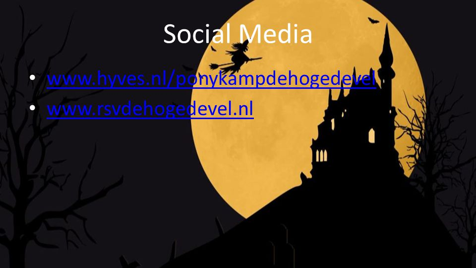 Social Media www.hyves.nl/ponykampdehogedevel www.rsvdehogedevel.nl