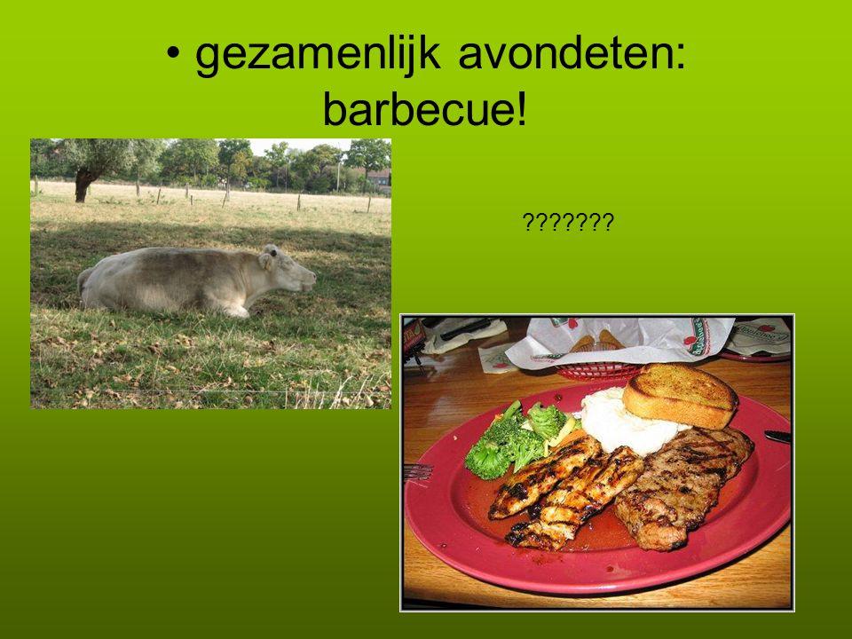 gezamenlijk avondeten: barbecue! ???????