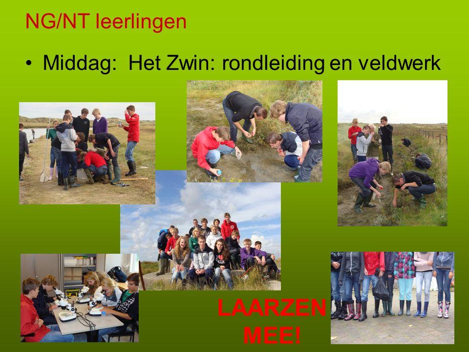 EM/CM leerlingen Middag: bezoek Memling museum, Groeningemuseum en foto-opdracht