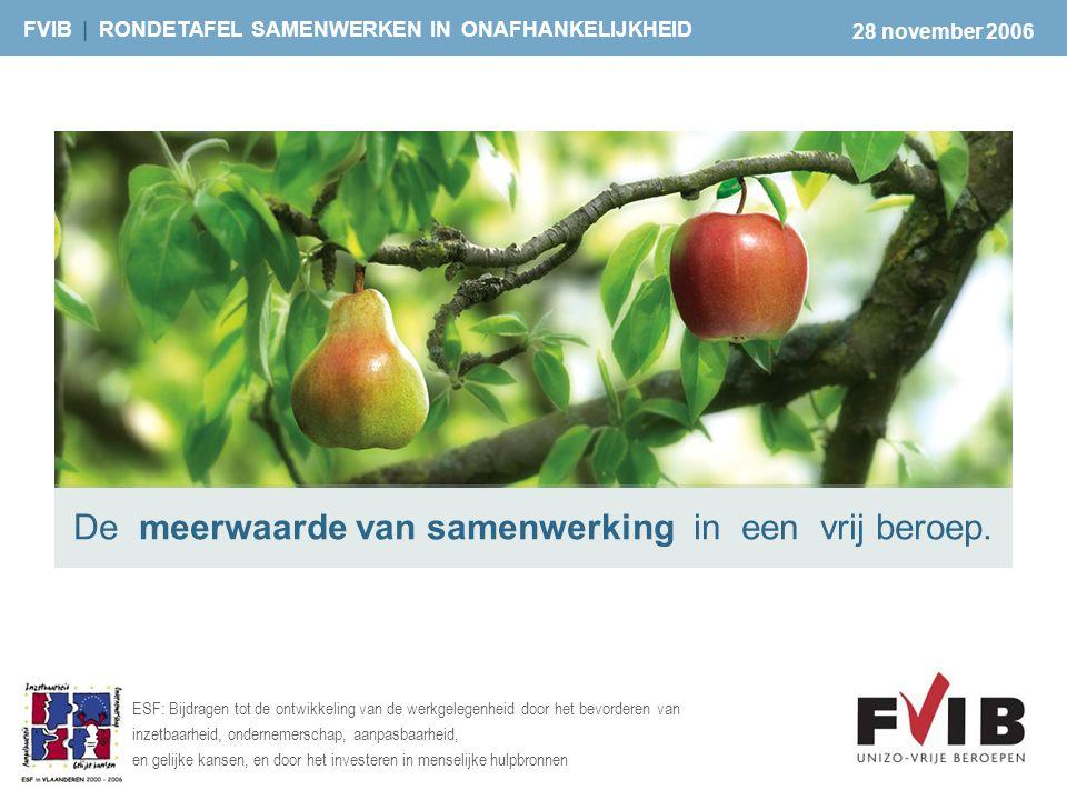 FVIB | RONDETAFEL SAMENWERKEN IN ONAFHANKELIJKHEID ESF: Bijdragen tot de ontwikkeling van de werkgelegenheid door het bevorderen van inzetbaarheid, on