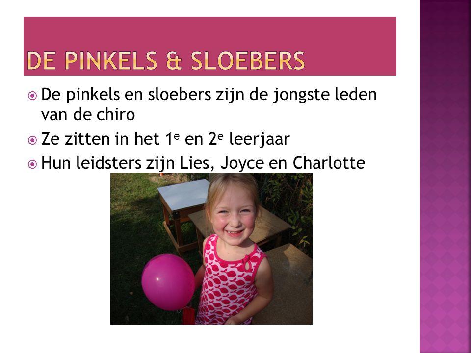  De Chiro bestaat uit verschillende afdelingen:  De Pinkels & Sloebers  Speelclub  Kwiks  Tippers 1  Tippers 2  Tiptiens 1  Tiptiens 2  Aspi's