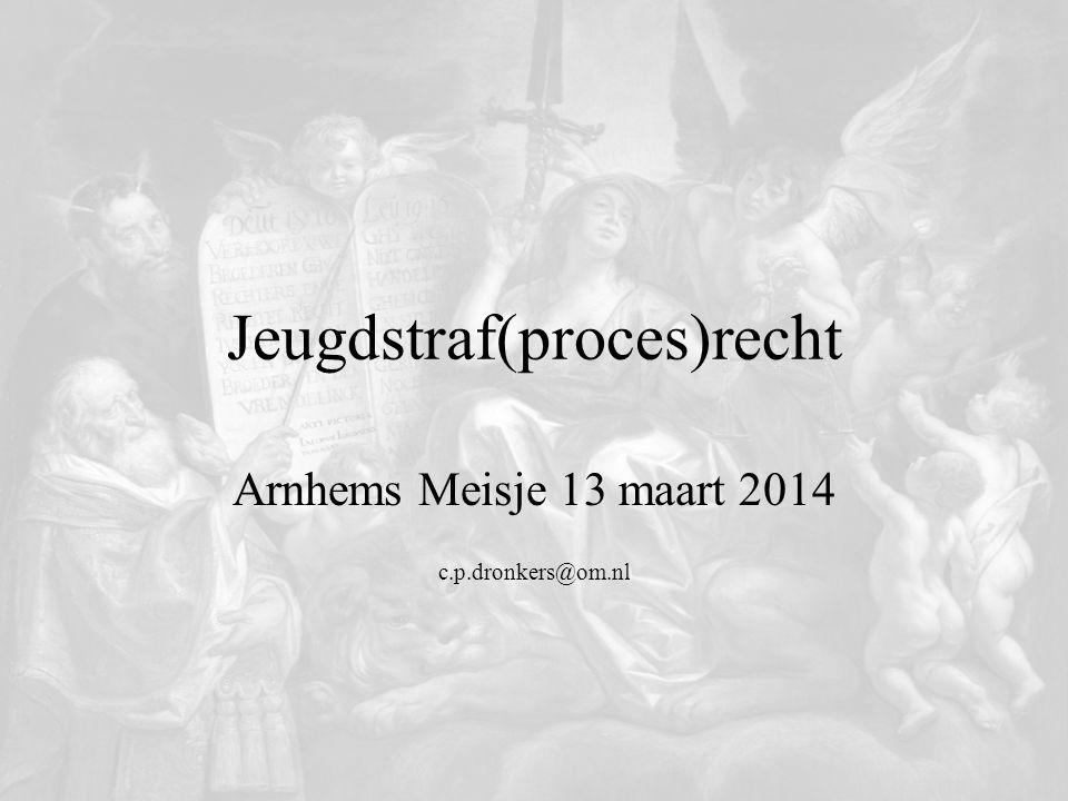 Jeugdstraf(proces)recht Arnhems Meisje 13 maart 2014 c.p.dronkers@om.nl