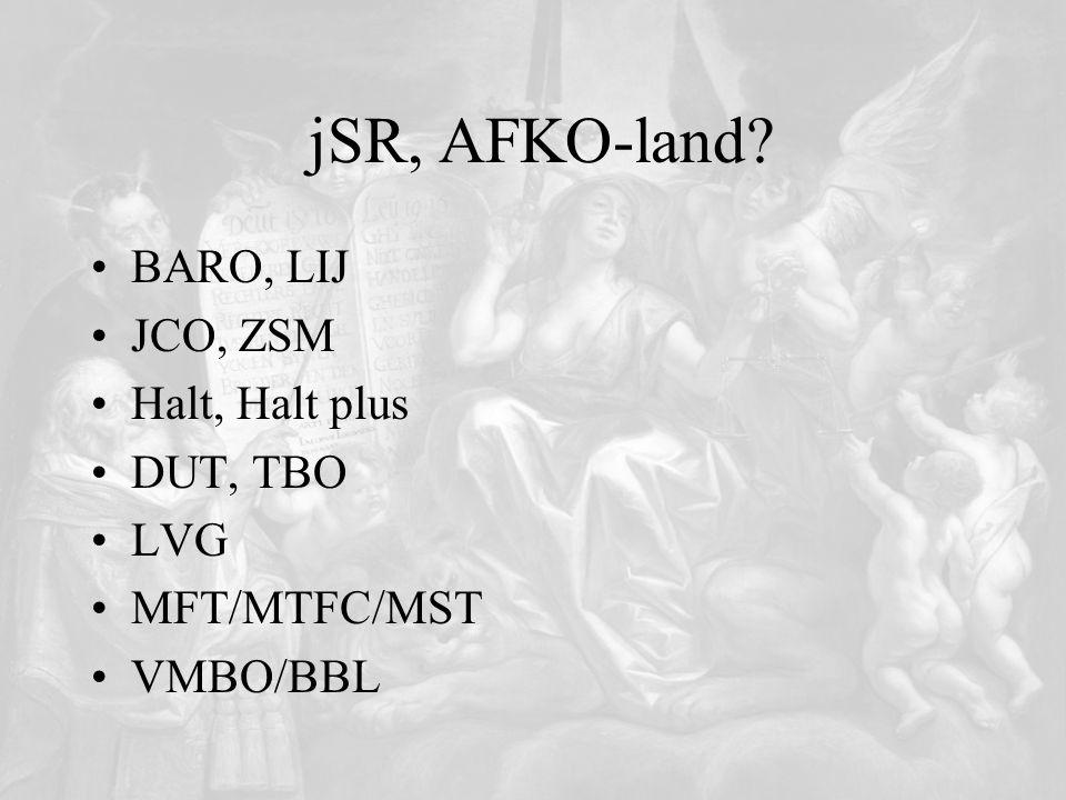 jSR, AFKO-land? BARO, LIJ JCO, ZSM Halt, Halt plus DUT, TBO LVG MFT/MTFC/MST VMBO/BBL