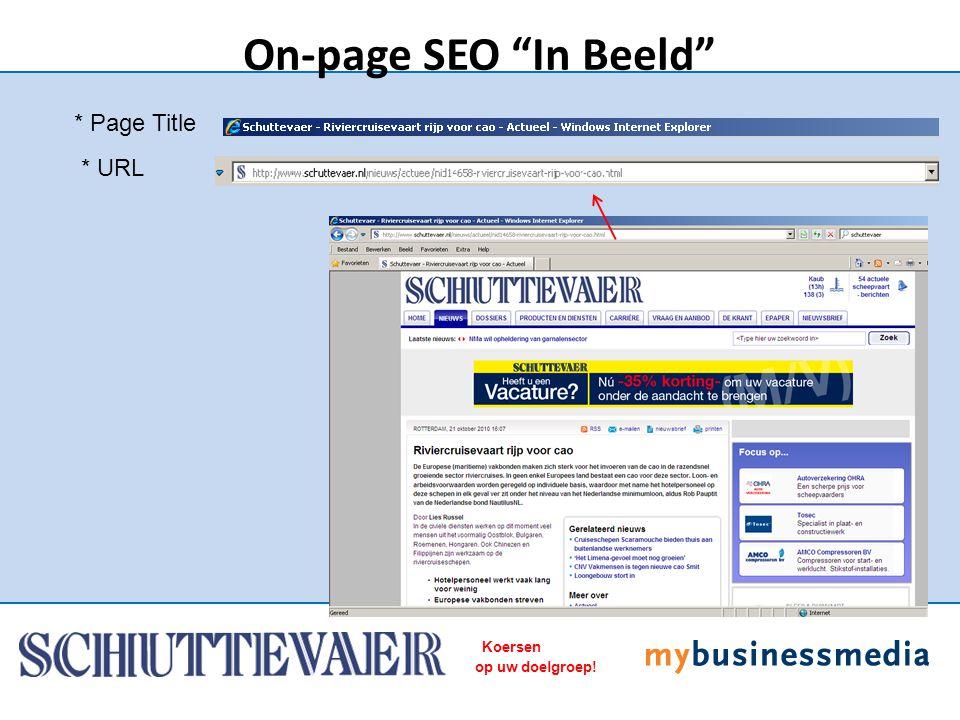 "Koersen op uw doelgroep! * Page Title On-page SEO ""In Beeld"" * URL"