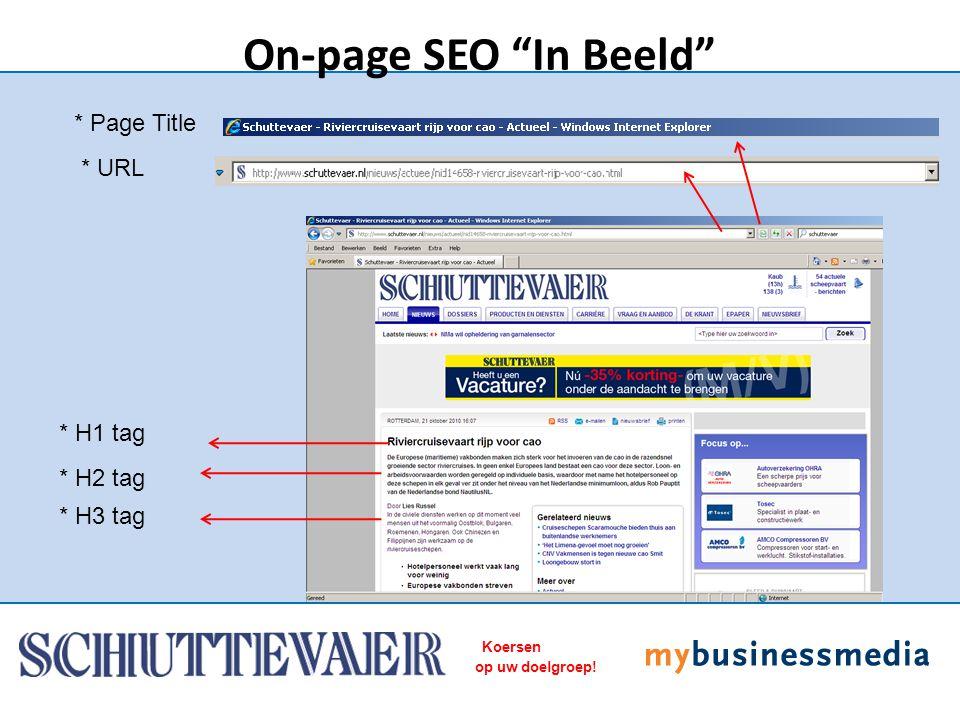 Koersen op uw doelgroep! * Page Title On-page SEO In Beeld * URL * H1 tag * H2 tag * H3 tag