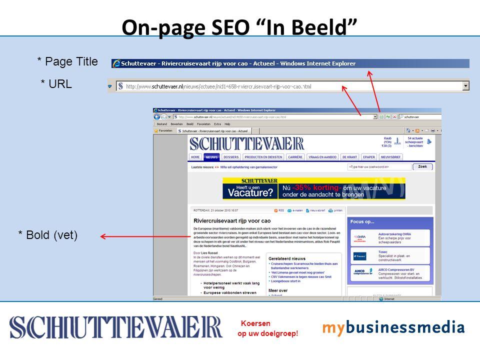 "Koersen op uw doelgroep! * Page Title On-page SEO ""In Beeld"" * URL * Bold (vet)"