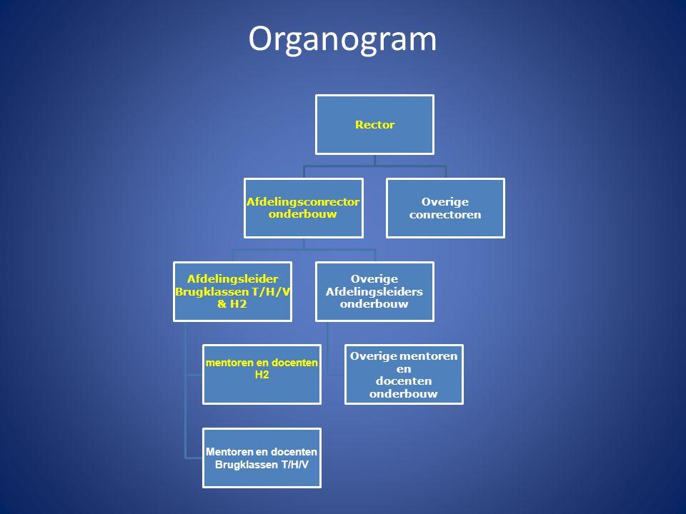 Organogram Rector Afdelingsconrector onderbouw Afdelingsleider Brugklassen T/H/V & H2 mentoren en docenten H2 Mentoren en docenten Brugklassen T/H/V O