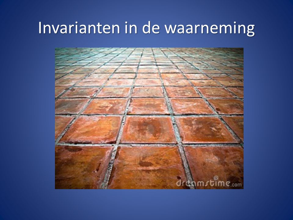 Invarianten in de waarneming