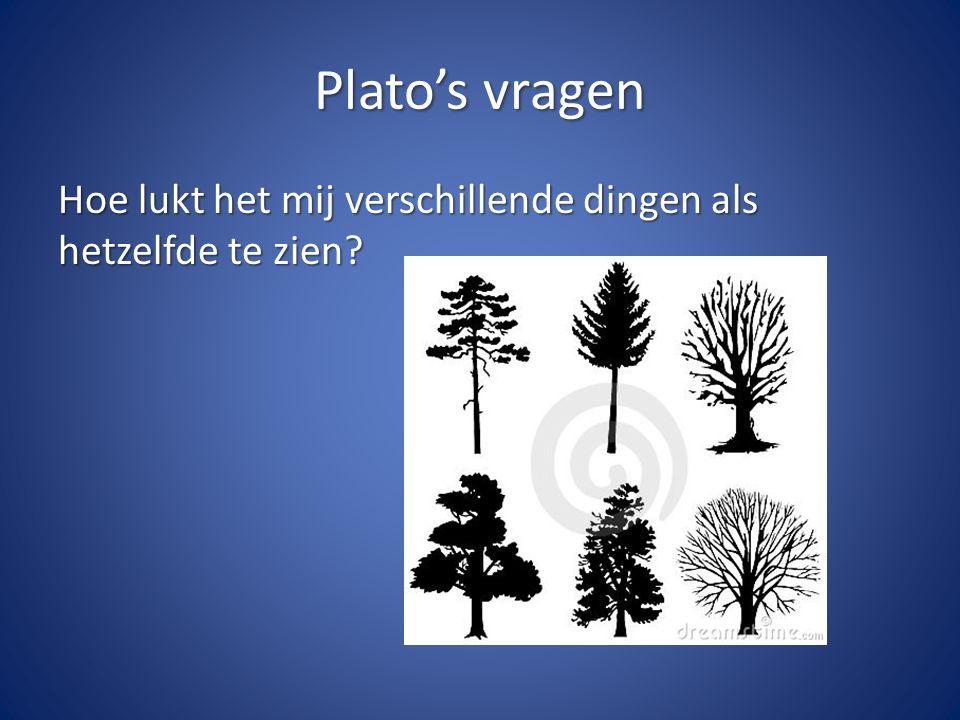 Plato's vragen Hoe lukt het mij verschillende dingen als hetzelfde te zien?