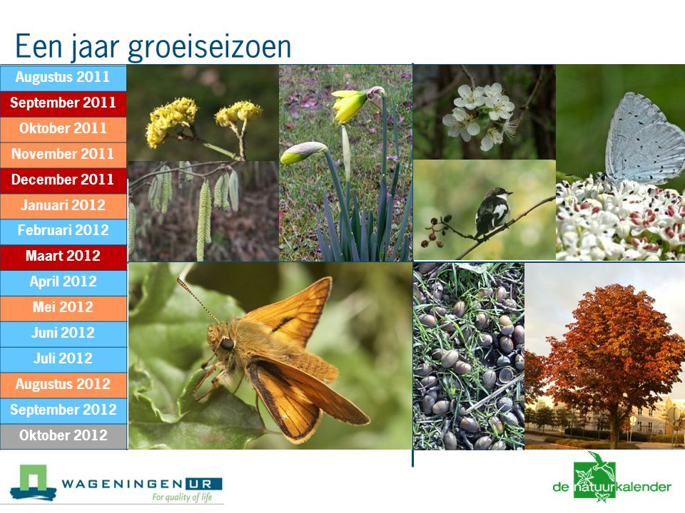 Winter Voorlente Lente Zomer Herfst Winter Augustus 2011 September 2011 Oktober 2011 November 2011 December 2011 Januari 2012 Februari 2012 Maart 2012 April 2012 Mei 2012 Juni 2012 Juli 2012 Augustus 2012 September 2012 Oktober 2012 Een jaar groeiseizoen