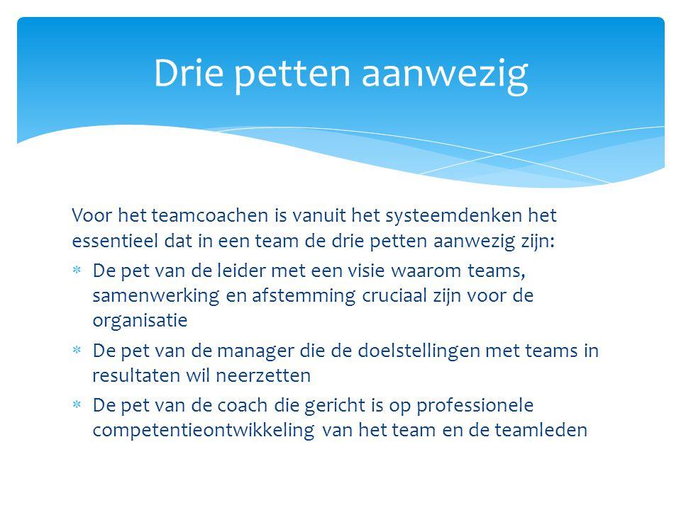 Voor het teamcoachen is vanuit het systeemdenken het essentieel dat in een team de drie petten aanwezig zijn:  De pet van de leider met een visie waa