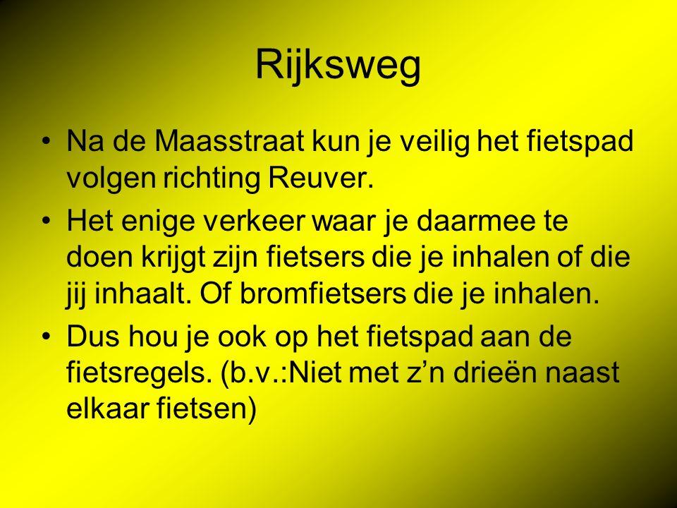 Rijksweg Na de Maasstraat kun je veilig het fietspad volgen richting Reuver.