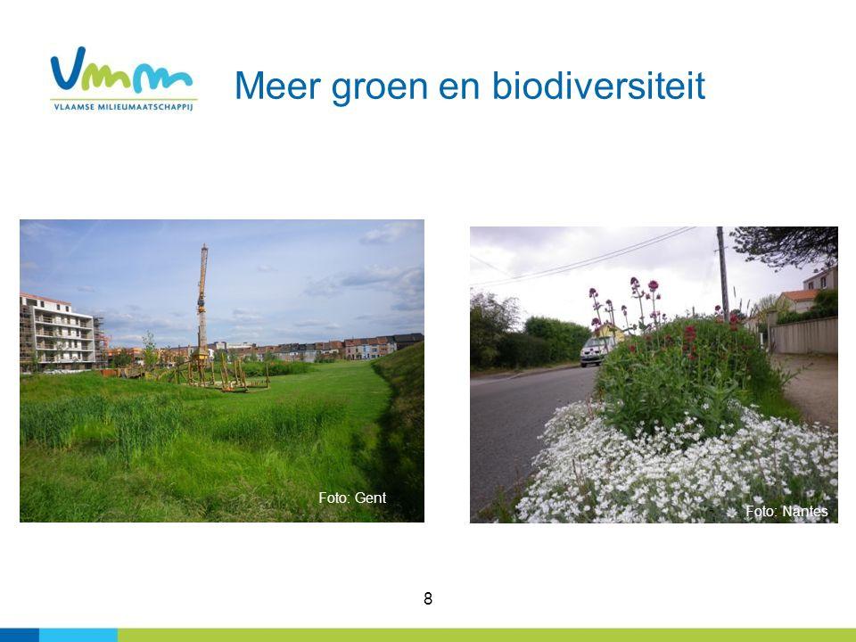 8 Meer groen en biodiversiteit Foto: Nantes Foto: Gent