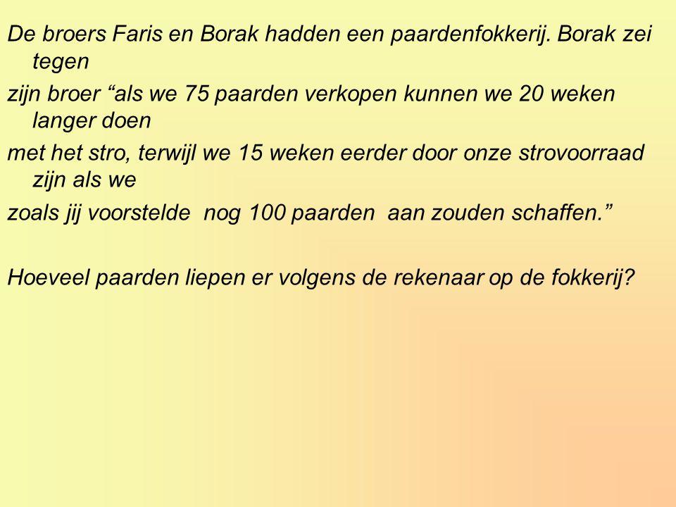 De broers Faris en Borak hadden een paardenfokkerij.
