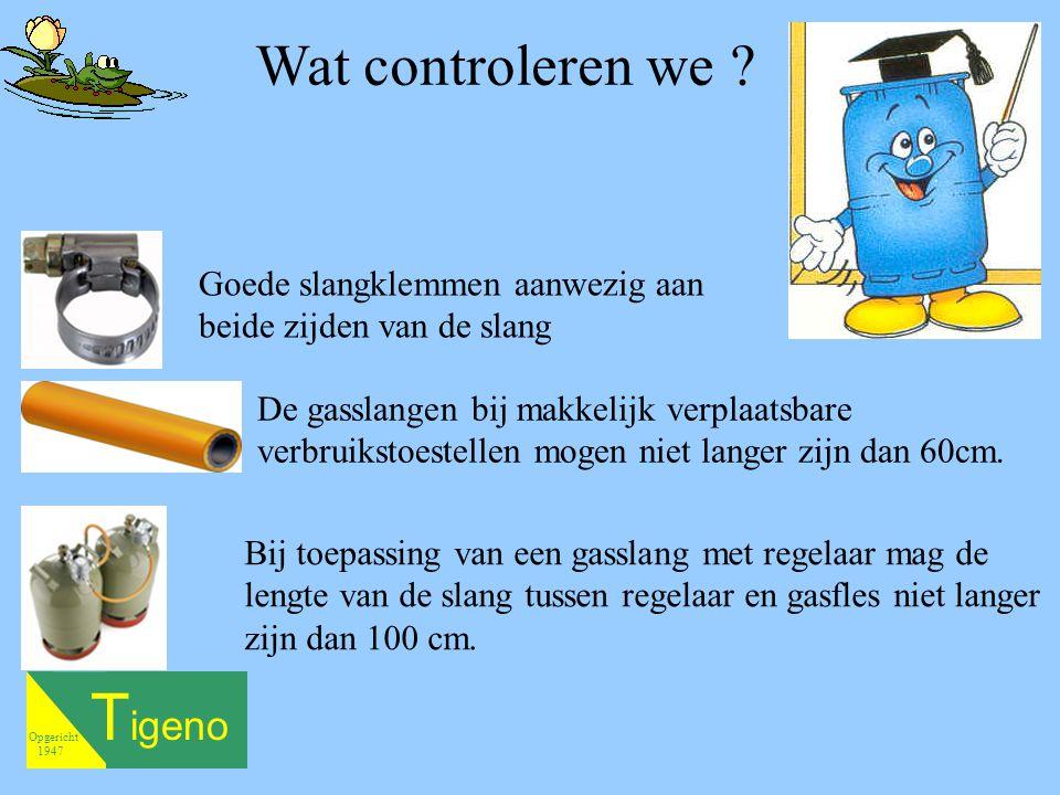 T igeno Opgericht 1947 Wat controleren we .