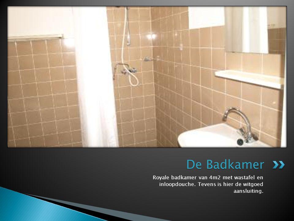 Royale badkamer van 4m2 met wastafel en inloopdouche. Tevens is hier de witgoed aansluiting. De Badkamer